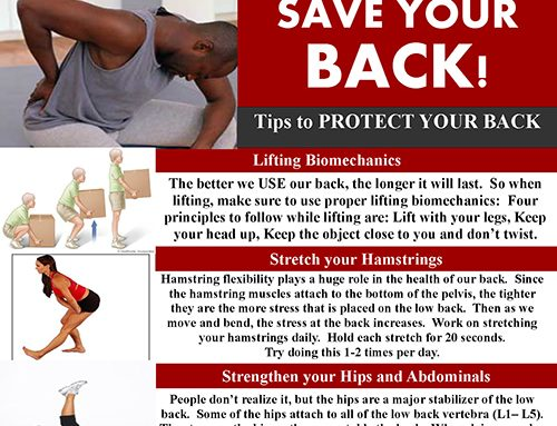 Save Your Back – Newsletter